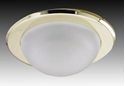 Picture of Glass Dome Downlight IP53 (G885) Gentech Lighting