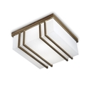 Picture of QUADRO Exterior Brass Ceiling Light (262.08.OB) IL Fanale