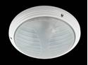 Picture of Slimline Exterior Ceiling Light (AL-4000) Domus Lighting