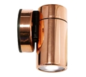 Picture of Hakea Copper LED Exterior Single Fixed Wall Pillar Light (LS201LED) Lumascape