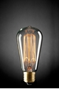 Picture of Carbon Filament Pear Shape Lamp