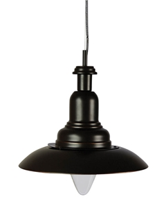 Picture of CAPPLE Industrial Single Pendant (OL65421) Oriel Lighting
