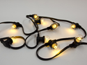 Picture of 240v Weatherproof Festoon Light