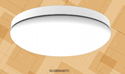Picture of Opal II Commercial Grade 30W LED Oyster Lighting (SO3800/40TC) Sunny Lighting