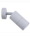 Picture of Exterior Silver 240V Single Adjustable Wall Pillar Light (PG1ASIL) CLA Lighting